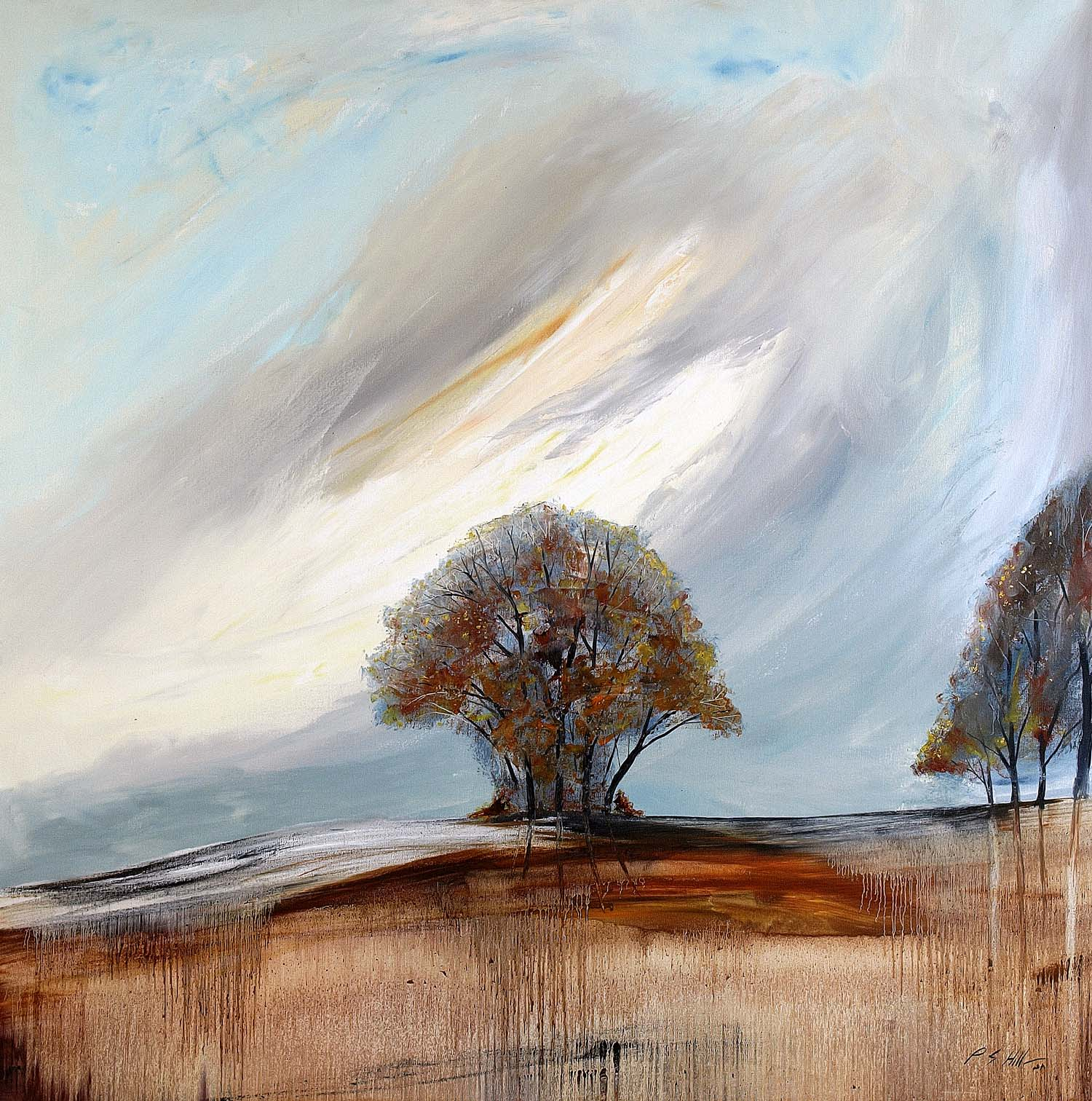 Picnic Tree by Peter Hill