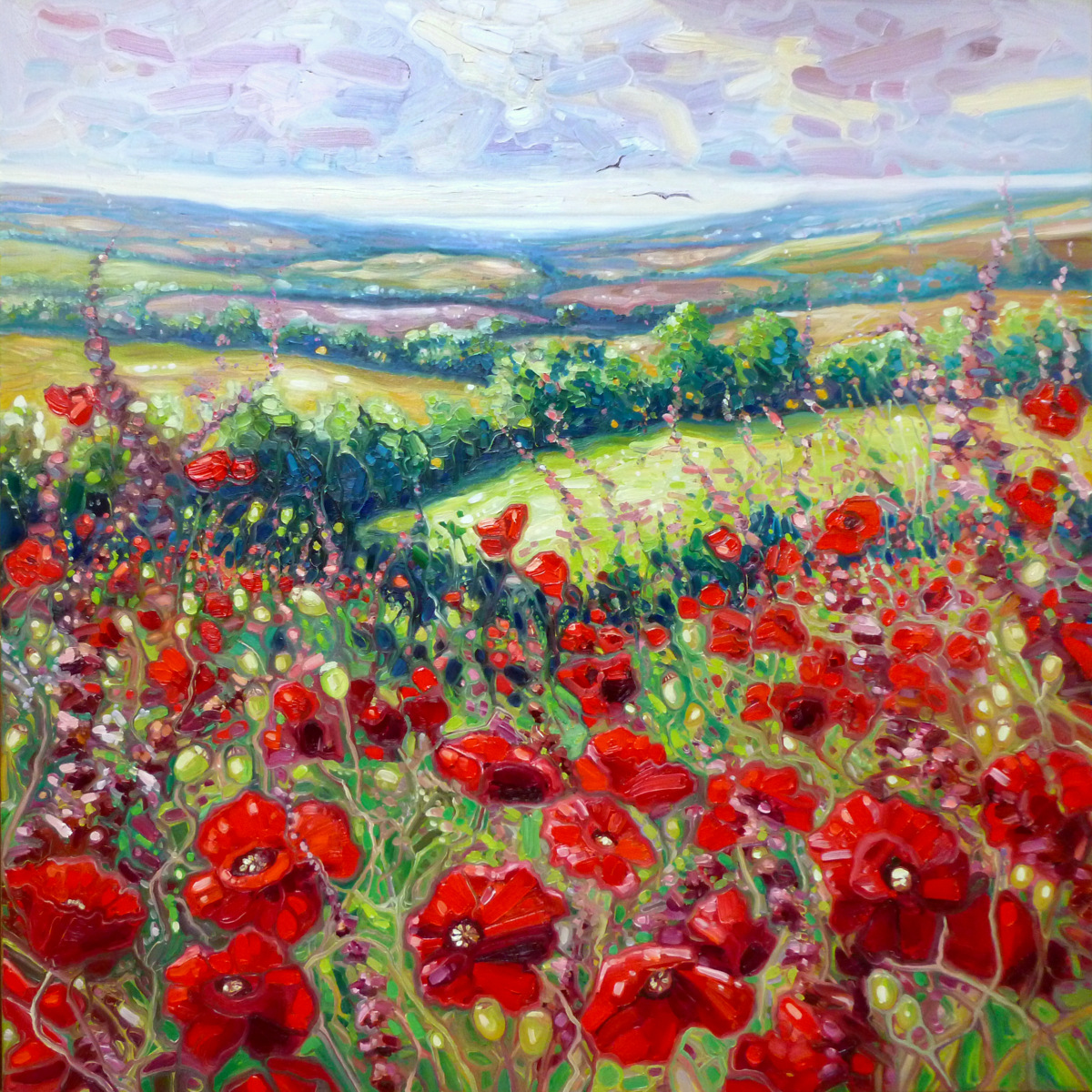 Summer poppies in a Sussex meadow by Gill Bustamante