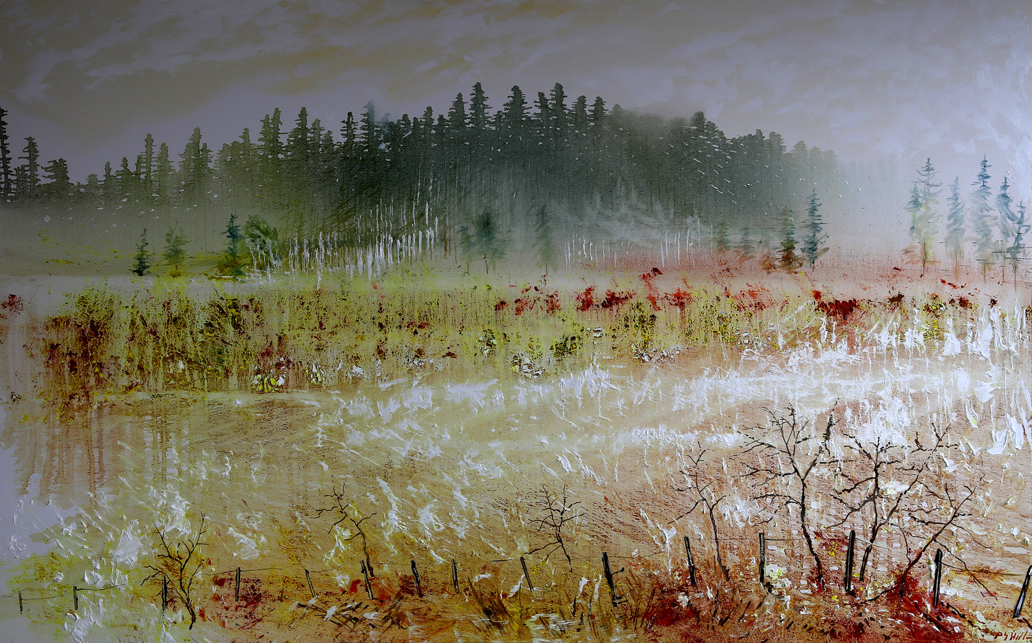 Rising mist early morning by Peter Hill