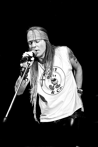 Guns N Roses 3 by Barry Plummer