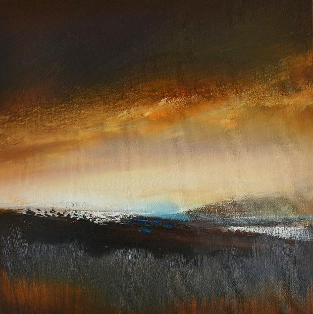 Sunset over Woodland 1 by David Taylor
