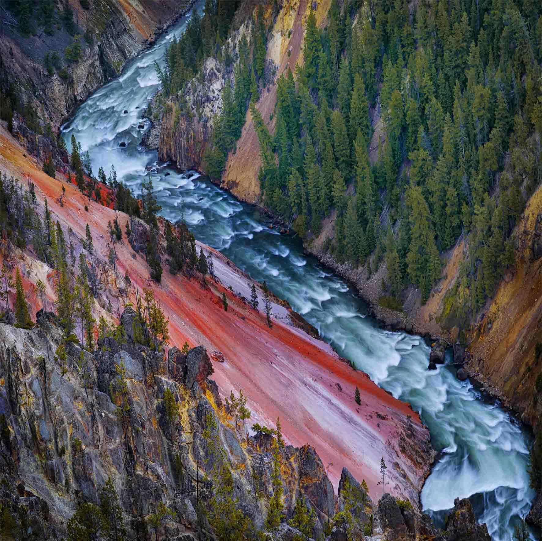 Yellowstone River, Wyoming by Ignacio Palacios