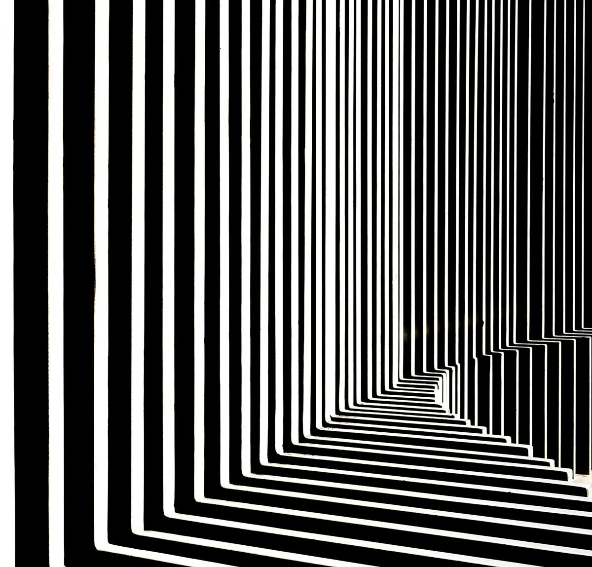 Fence by Harry Verschelden