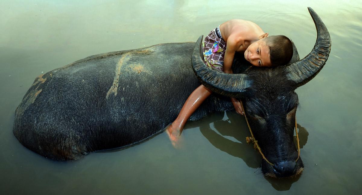 Sleepy by Fahmi Bhs